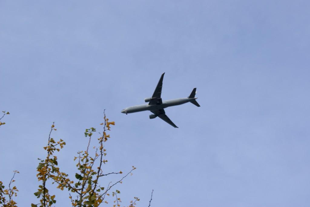 Big big plane